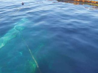 2017 - Oil spill from the tanker Agia Zoni II in Greece