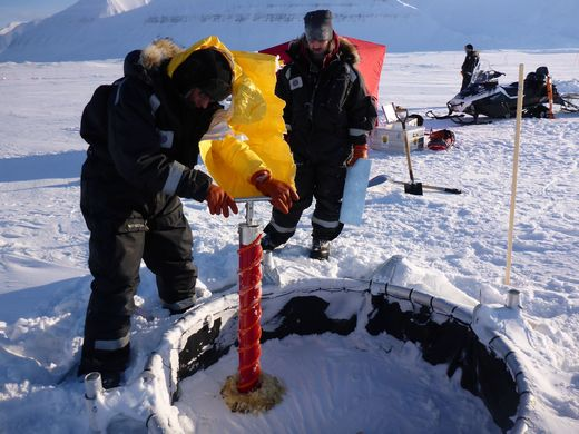 Taking an ice core sample from a mesocosm