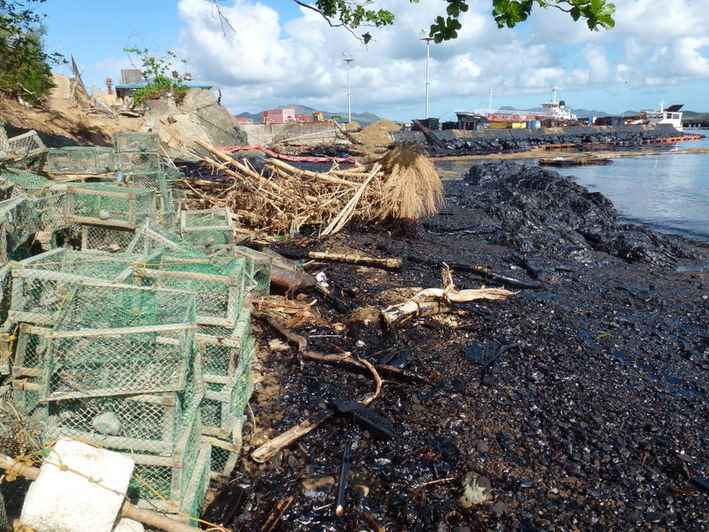 Oiled shoreline, vegetation destroyed by the typhoon with the barge in the background (in the middle)
