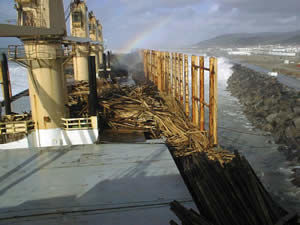 The Coral Bulker's deck