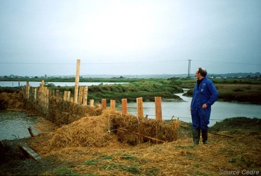 Filter barrier for the protection of sluice channels and salt marshes.