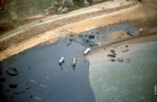 Aerial view of a polluted beach