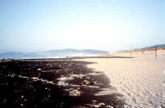 Etendue de pétrole sur une plage victime de l'Aegean Sea. © Cedre