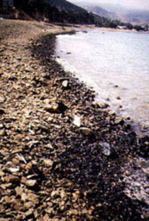 La nappe d'hydrocarbures atteint les plages de galets (Source : Cedre)