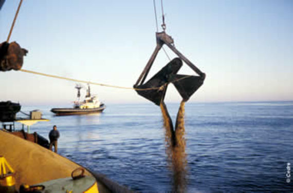 Dumping wheat in the open sea