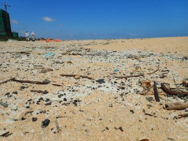 Pollution dans les laisses de mer (plastique et GPI)