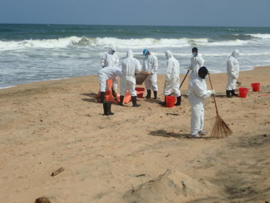 Nettoyage manuel du littoral